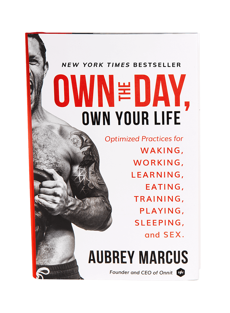 own the day pdf audible